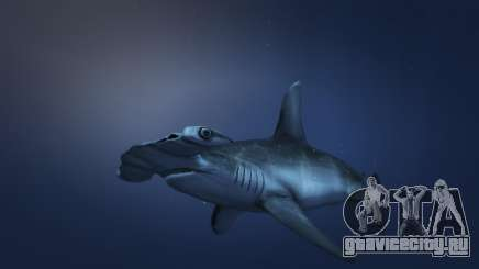 Акула молот из ГТА 5