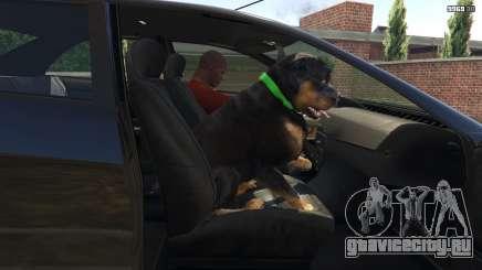 Как дрессировать собаку в ГТА 5