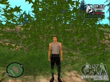 Совершенная реальность для GTA San Andreas