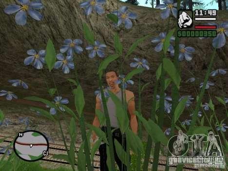 Совершенная реальность для GTA San Andreas второй скриншот