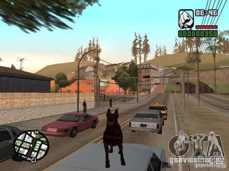 Цербер из Resident Evil 2 для GTA San Andreas пятый скриншот