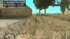 ZiT для GTA San Andreas