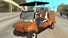 Golfcart caddy