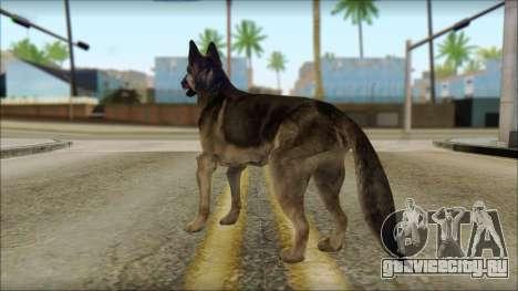 Dog Skin v1 для GTA San Andreas второй скриншот