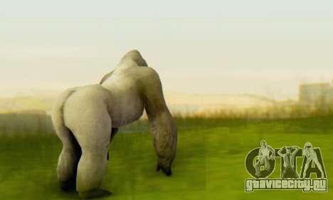 Gorilla (Mammal) для GTA San Andreas третий скриншот