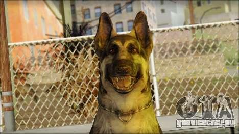 Dog Skin v1 для GTA San Andreas третий скриншот