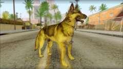 Dog Skin v1 для GTA San Andreas
