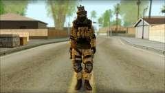 Солдат ЕС (AVA) v6