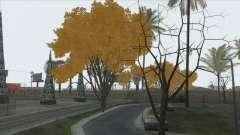 Autumn in SA v2