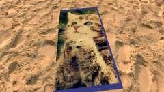 Пляжные коврики с котятами для GTA San Andreas