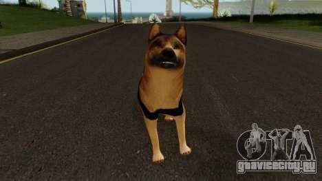 K9 Dog With Vest для GTA San Andreas второй скриншот